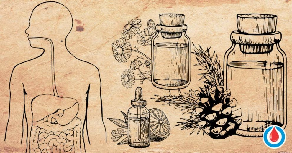 Top 8 Essential Oils to Improve Blood Sugar Levels and Digestion