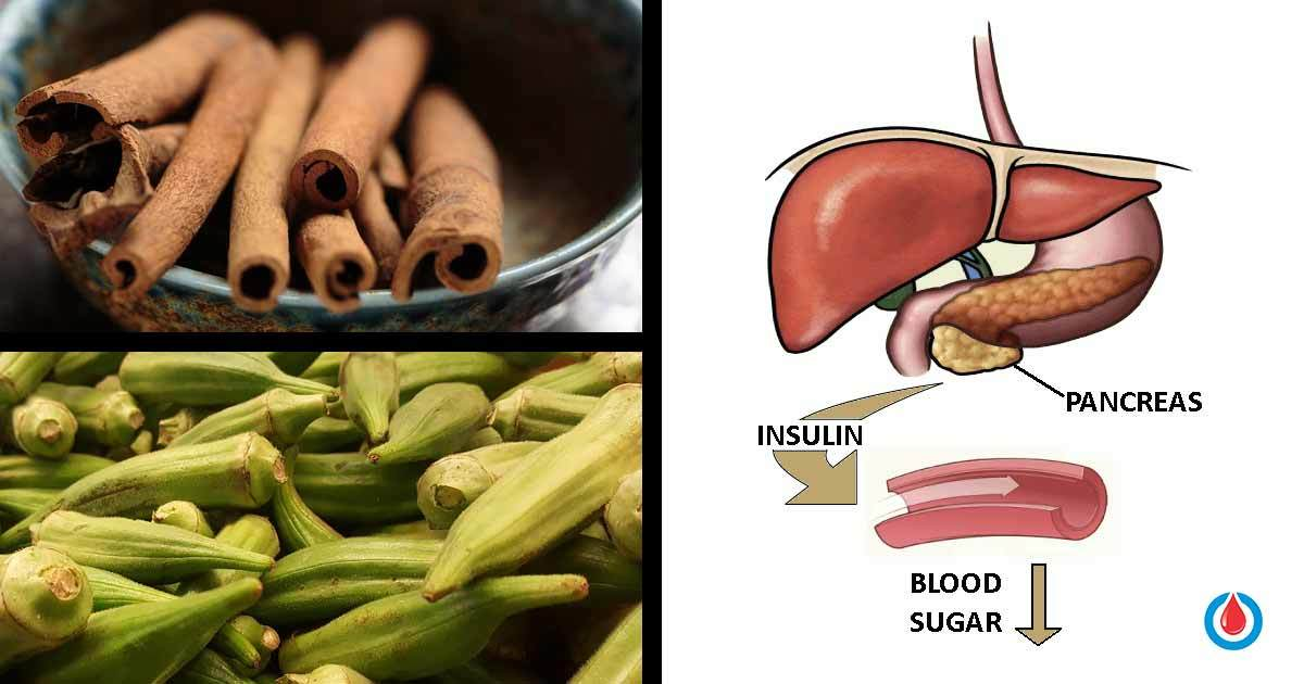 The Best Herbal Treatments to Control Blood Glucose Levels
