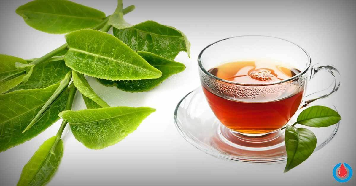How to Make Guava Leaf Tea to Reduce Blood Glucose & Cholesterol, and Boost Weight Loss