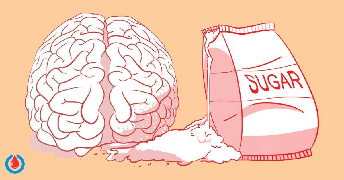 Can Your Blood Glucose Levels Affect the Function of Your Brain