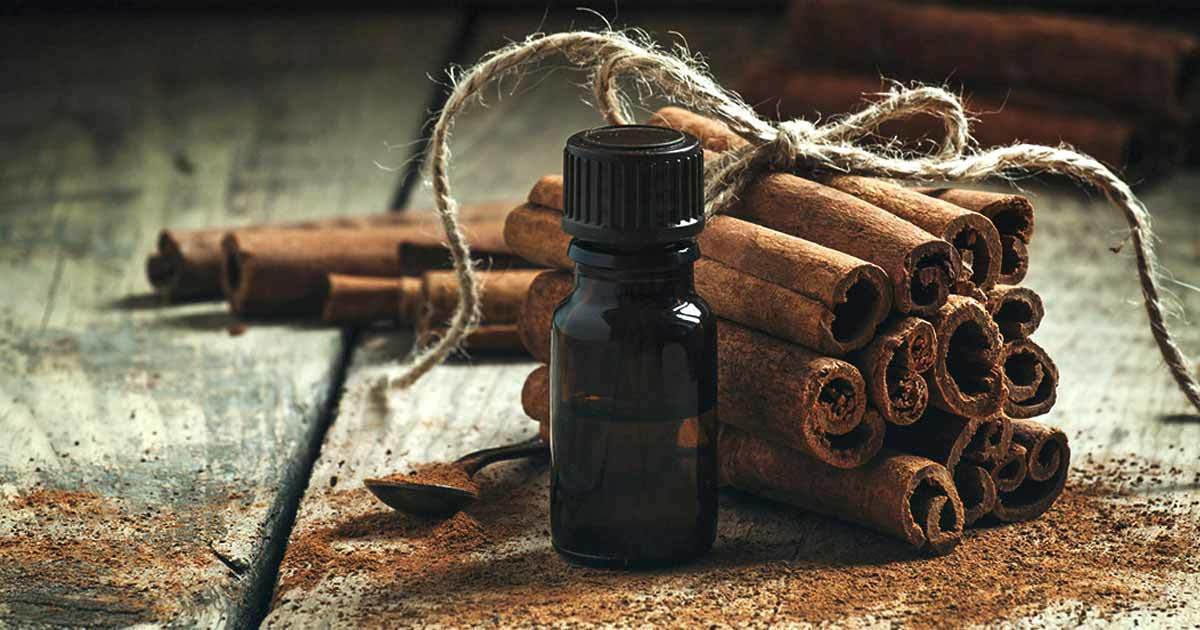 How to Use Cinnamon Oil to Protect the Kidneys and Treat High Blood Glucose