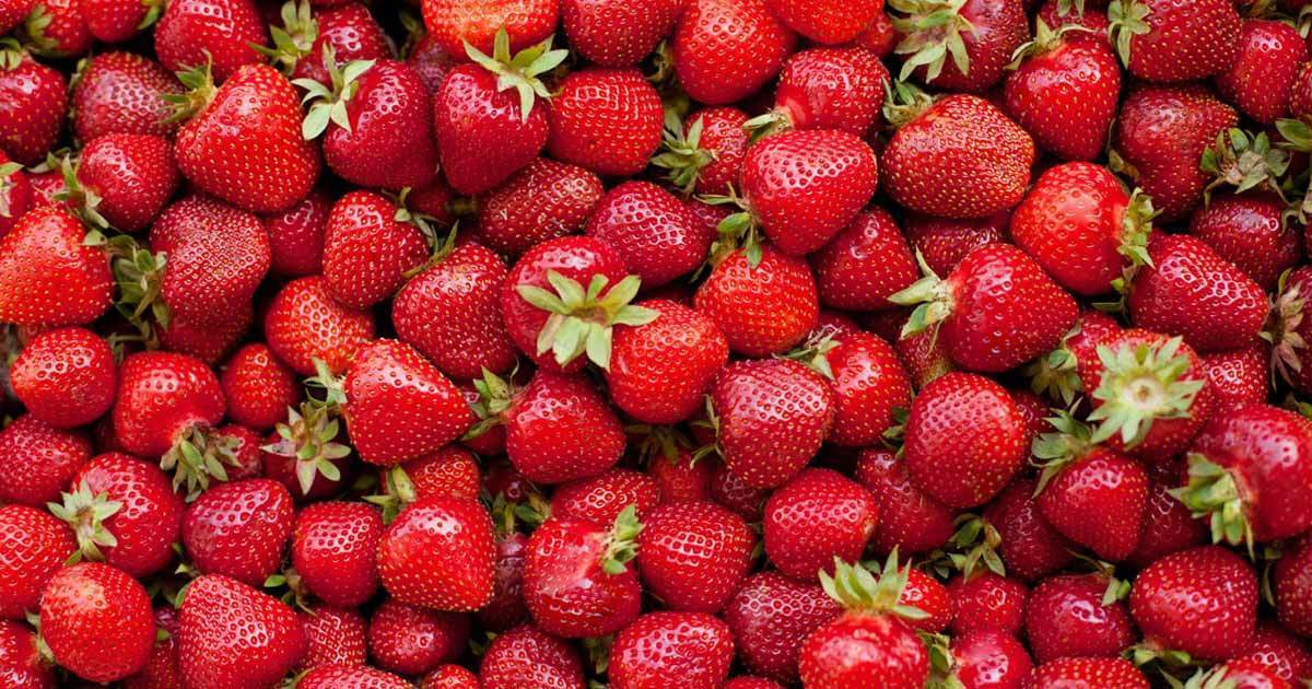 Are Strawberries Good for Your Blood Glucose Levels