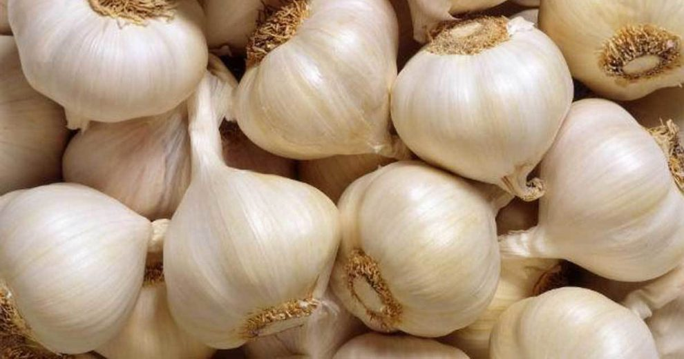 This Is Why You Should Eat Garlic More Often