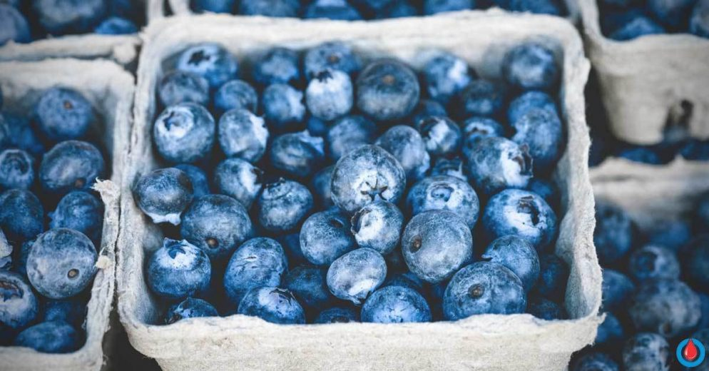 The Incredible Effects of Blueberries on Metabolic Syndrome