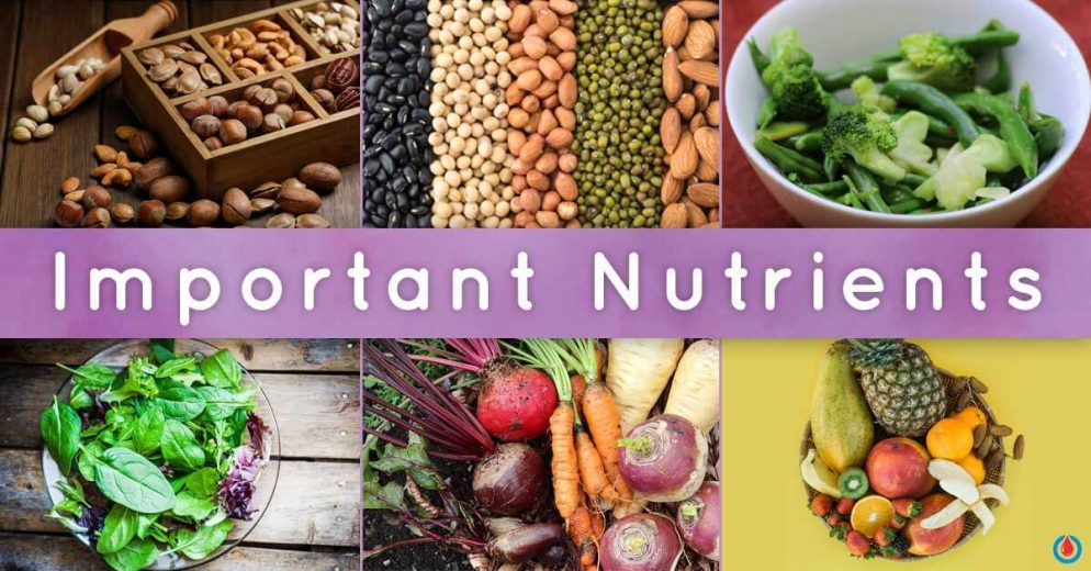 A Plant-Based Diet for Healthy Blood Sugar Levels