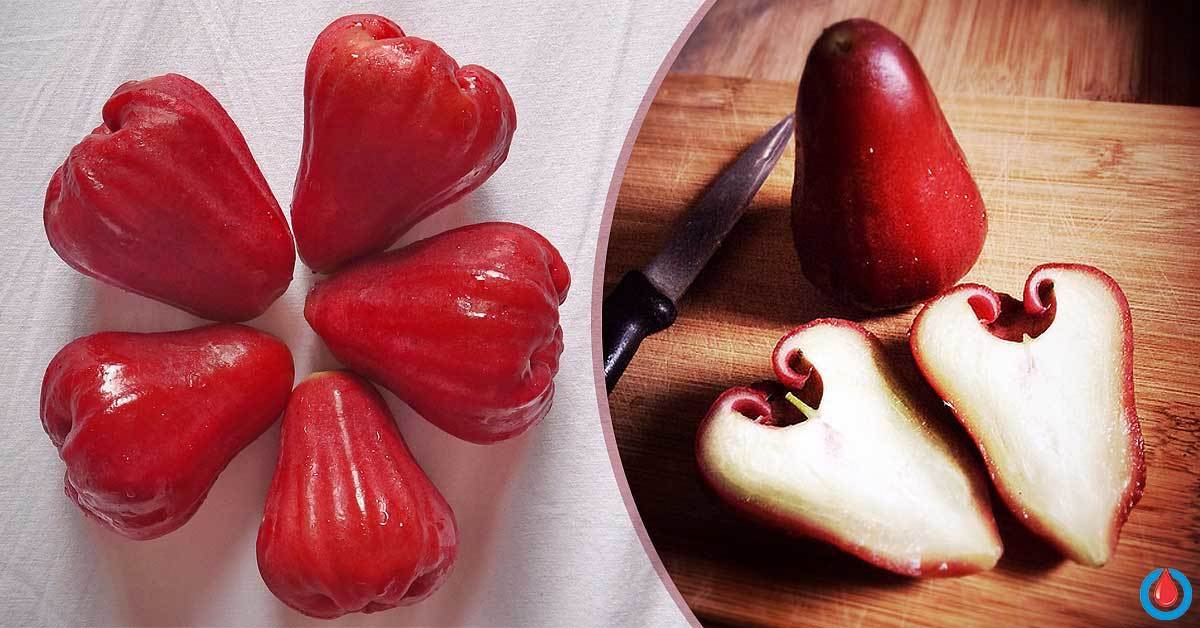 Are Rose Apples Good for Diabetes Treatment and Prevention?