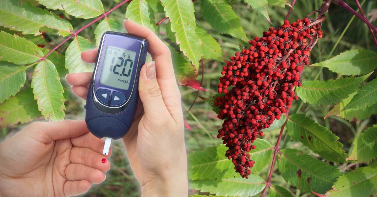 The Incredible Benefits of Sumac for Blood Sugar Control