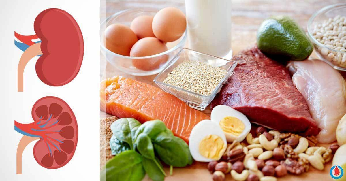What Happens If You Have Excess Proteins in the Kidneys
